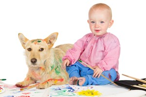 Pet Stain and Odor Removal Woodland Hills